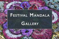 Festival mandala gallery