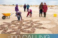 T100 Calling beach mandala