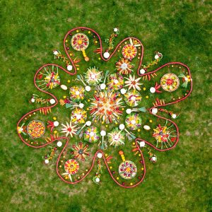 Grow Your Own Mandala Purfleet