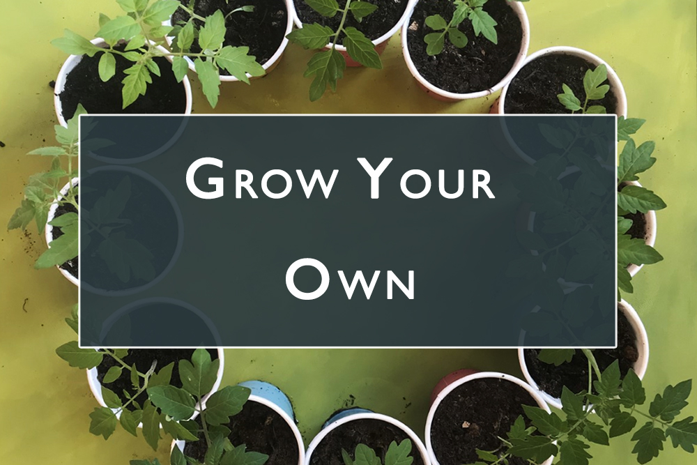 Grow your own Gallery