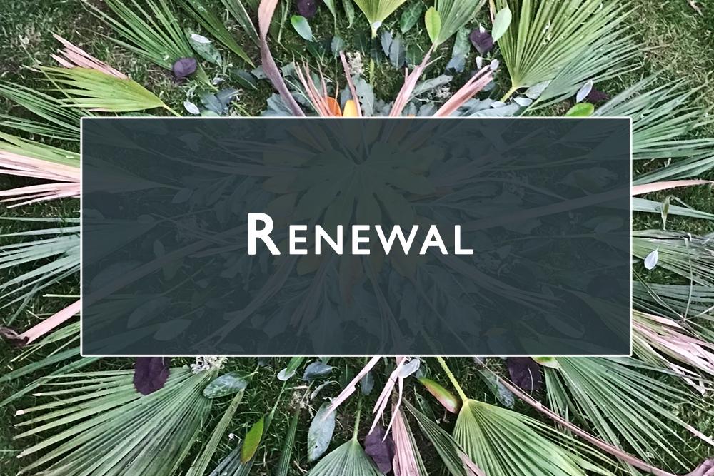 Renewal Gallery