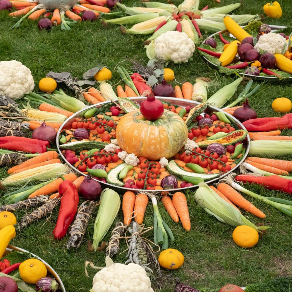 Vegetables arranged in a mandala pattern on grass