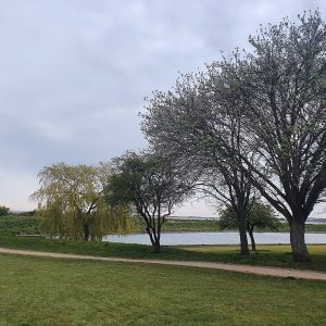 Landscape in East Tilbury