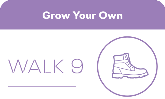 Walk 9 Grow your own