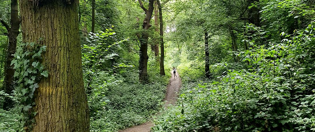 28 July Langdon Hills