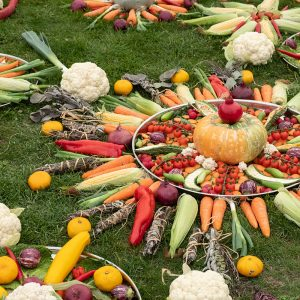 vegetables arranged on the grass